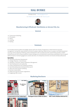 Managing Director, Vp Sales & Marketing Resume Sample and Template