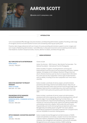 Self Employed Auto Entrepreneur Resume Sample and Template