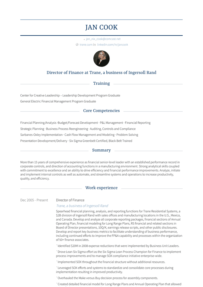 Director Of Finance Resume Sample and Template