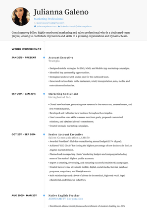 Marketing Consultant  Resume Sample and Template