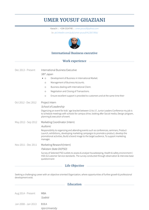 International Business Executive Resume Sample and Template