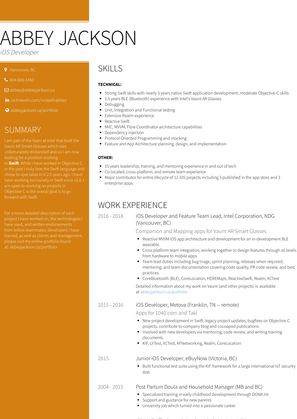 Abstract Painter, self   Employed Artist Resume Sample and Template