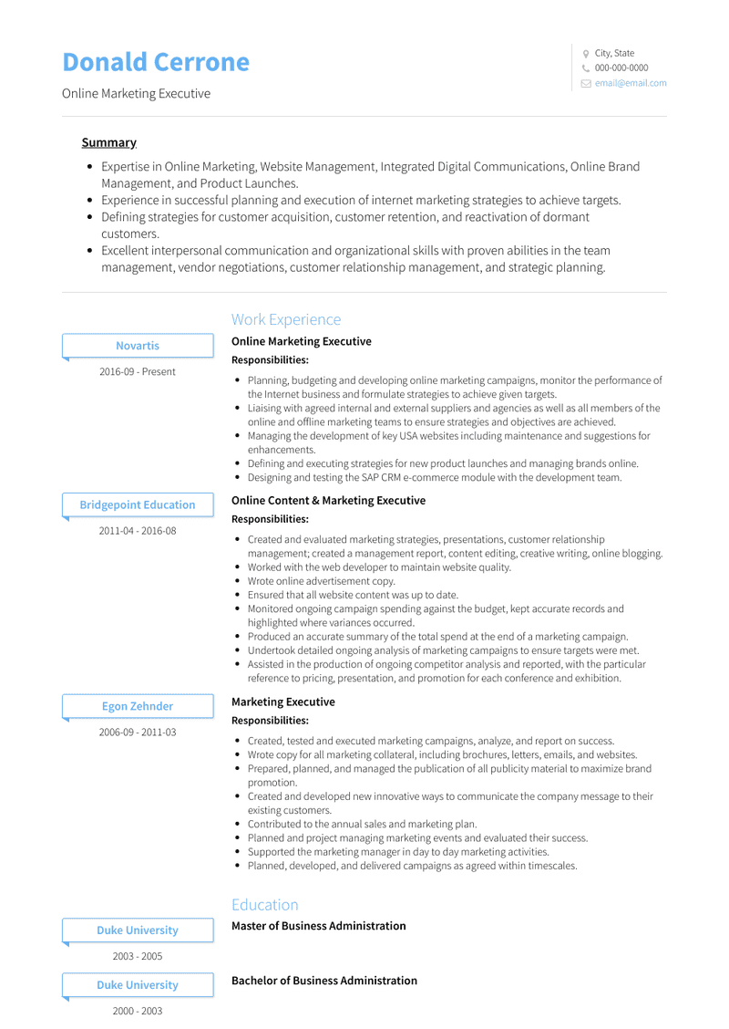Online Marketing Executive Resume Samples And Templates Visualcv