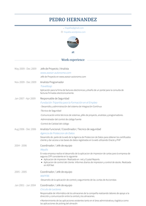 Analista Programador Resume Sample and Template
