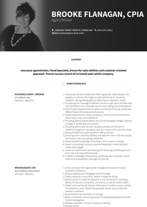 Insurance Agent / Broker Resume Sample and Template