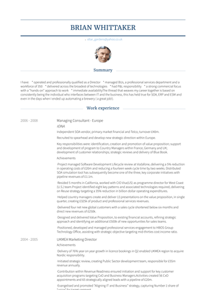 Managing Consultant   Europe Resume Sample and Template