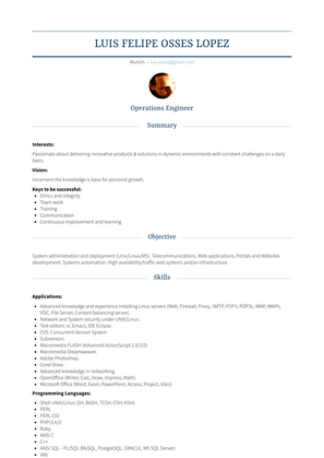 Software Tools & Automation Engineer Resume Sample and Template