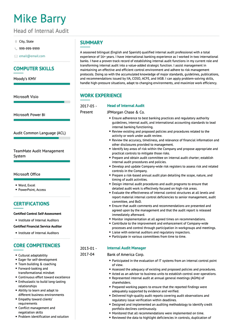 Internal Auditor CV Example and Template