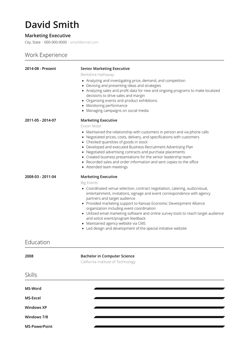 Executive Resume Samples And Templates Visualcv