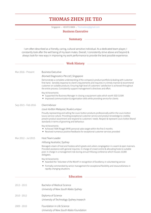 Business Executive Resume Sample and Template