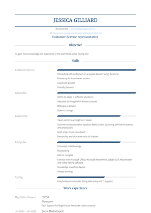 It/csr Resume Sample and Template