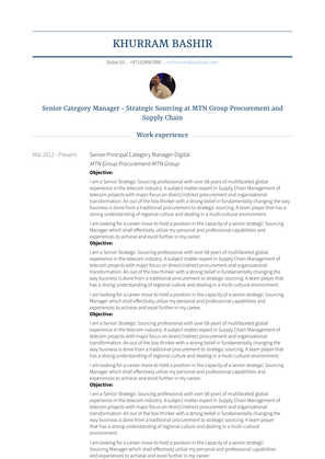 Senior Principal Category Manager Digital Resume Sample and Template