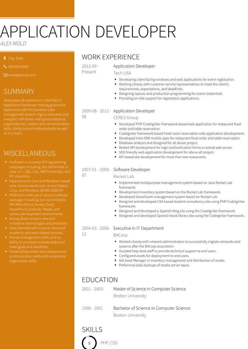 Application Developer Resume Samples And Templates Visualcv