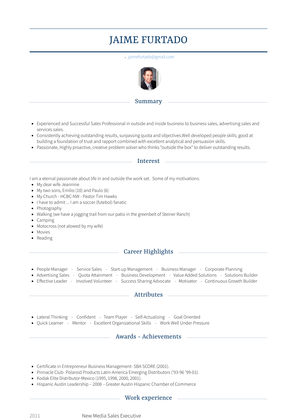 New Media Sales Executive Resume Sample and Template